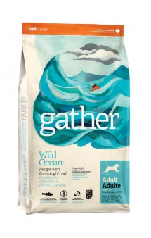 GATHER Wild Ocean Fish DF, органический корм для собак, с океанической Рыбой / Petcurean (Канада)