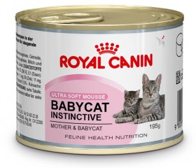 BABYCAT INSTINCTIVE / Royal Canin (Франция)