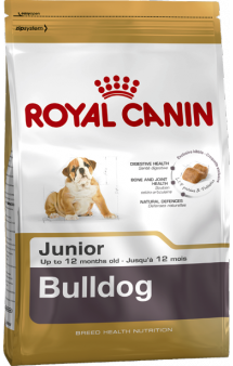 Bulldog junior / Royal Canin (Франция)