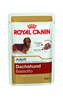 Dachshund Bassotto WET / Royal Canin (Франция)