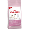 MOTHER and BABYCAT / Royal Canin (Франция)