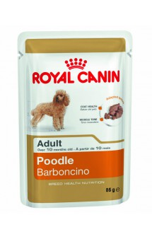 Poodle Barboncino WET / Royal Canin (Франция)