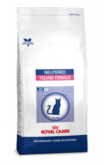 NEUTERED Young Female / Royal Canin (Франция)
