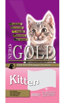 Kitten Chicken 34/22 / Nero Gold (Нидерланды)