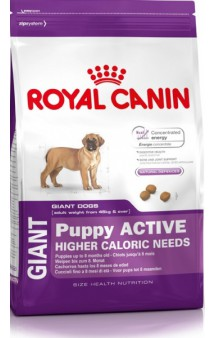 GIANT Puppy ACTIVE / Royal Canin (Франция)