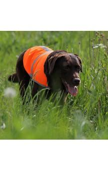 Сигнальная попона для собак / OSSO Fashion (Россия)