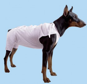 Послеоперационная попона для кошек и собак / OSSO Fashion (Россия)