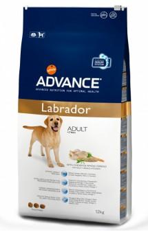 Labrador, корм для Лабрадоров / Advance (Испания)