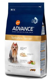 Yorkshire Terrier, корм для Йоркширских терьеров / Advance (Испания)