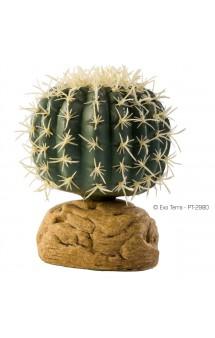 Barrel Cactus, Бочкообразный кактус, искусственное растение / Hagen (Германия)