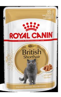 British Shorthair Adult в соусе, влажный корм для Британской короткошерстной / Royal Canin (Франция)