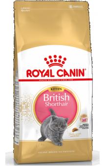British Shorthair Kitten, корм для котят Британской короткошерстной / Royal Canin (Франция)