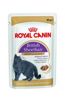 British Shorthair Wet, влажный корм для Британской короткошерстной / Royal Canin (Франция)