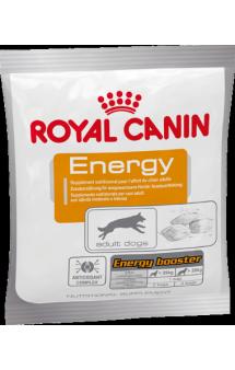 Energy, лакомство для собак / Royal Canin (Франция)