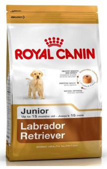 Labrador Retriever junior / Royal Canin (Франция)