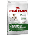 MINI Starter mother and babydog / Royal Canin (Франция)