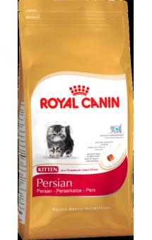 Persian Kitten / Royal Canin (Франция)