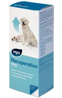 Viyo Recuperation Dog, питательный напиток для собак всех возрастов / VIYO (Бельгия)