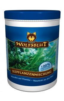 Seepflanzenmishung, Морские водоросли, пищевая добавка для собак / Wolfsblut (Германия)