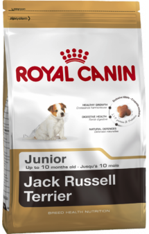 JACK RUSSELL TERRIER Junior / Royal Canin (Франция)